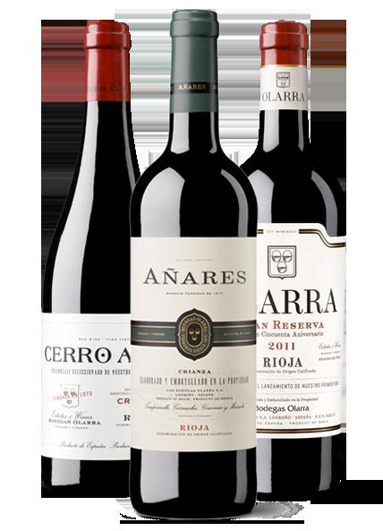 Vinos de Bodegas Olarra: Cerro Añón, Añares y Olarra